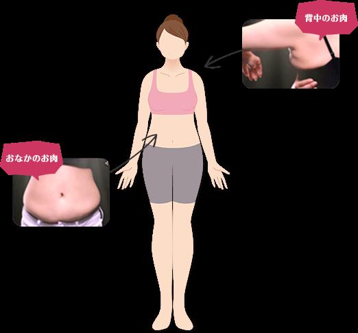 女性の中年太り・更年期脂肪・更年期脂肪