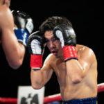 ボクシング複数階級制覇