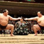 相撲は国技ではありません
