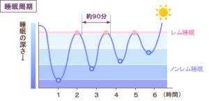 眠りの周期