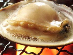 桑名の焼き蛤