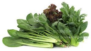 ヅムージーは葉野菜を中心にできている